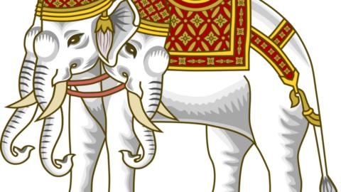 Белый слон в подарок или о некоторых особенностях реформы ЖКХ в России …