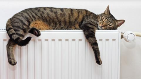 Почему мы платим за отопление летом?