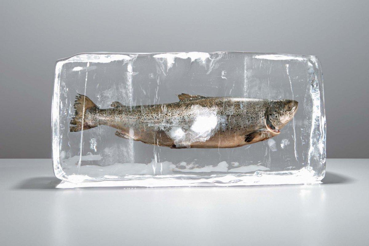 Мороженную рыбу вразвес нужно продавать без учета веса ледяной глазури